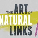 how to get natural links through design