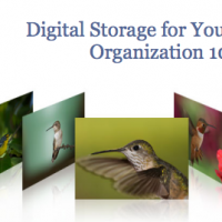 Digital photography storage tips