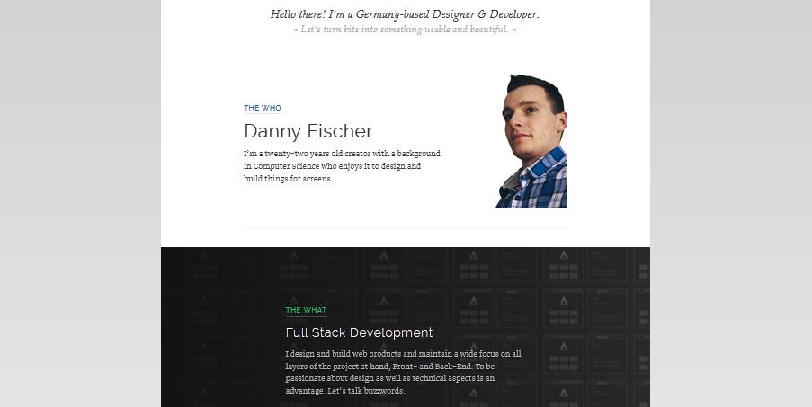 website portfolio for developer 2