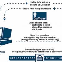 SSL cert or CA cert