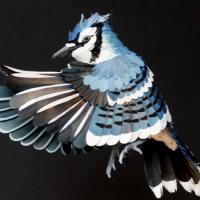 paper humming bird