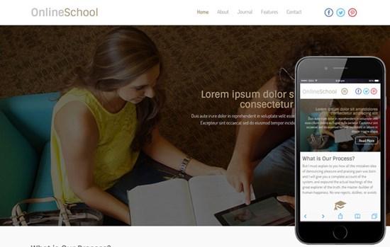 online_school