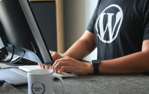 Building a Review Site in WordPress 1