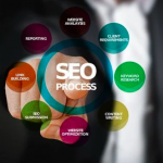 What does their business need professional SEO services
